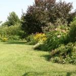 cesped-jardin