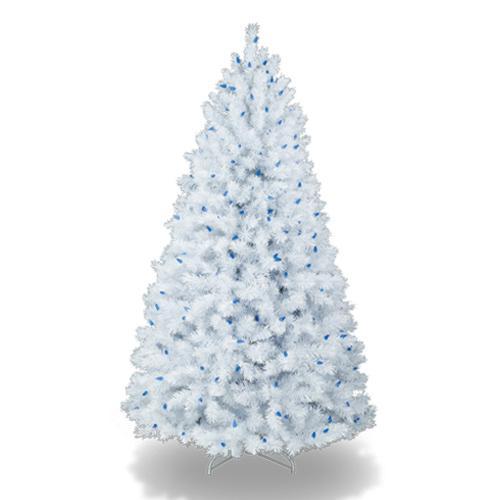 Coloridos rboles de navidad - Arbol de navidad en blanco ...