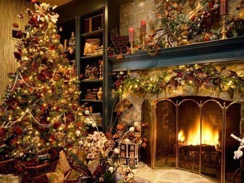 como cuidar arbol navidad natural 2 Cómo Cuidar un Árbol de Navidad Natural