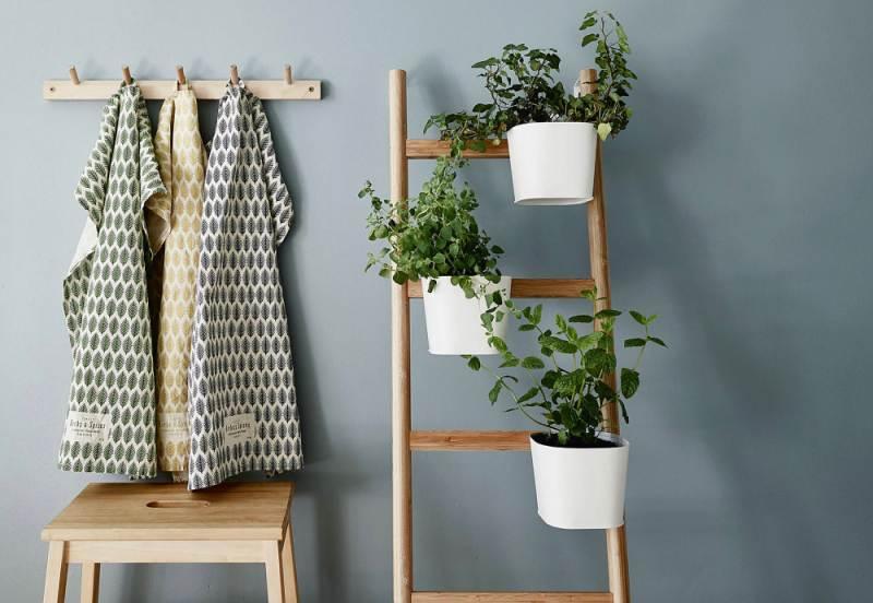 Decorar con plantas la casa en primavera for Decoracion de plantas