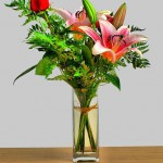 Flores cortadas y frescas