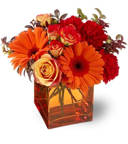 arreglos florales de colores intensos