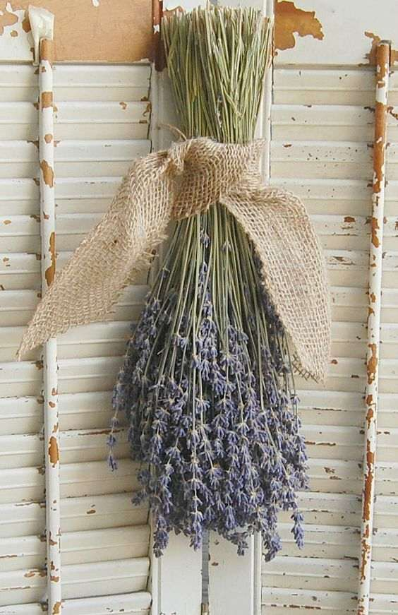 ramilletes de flores secas