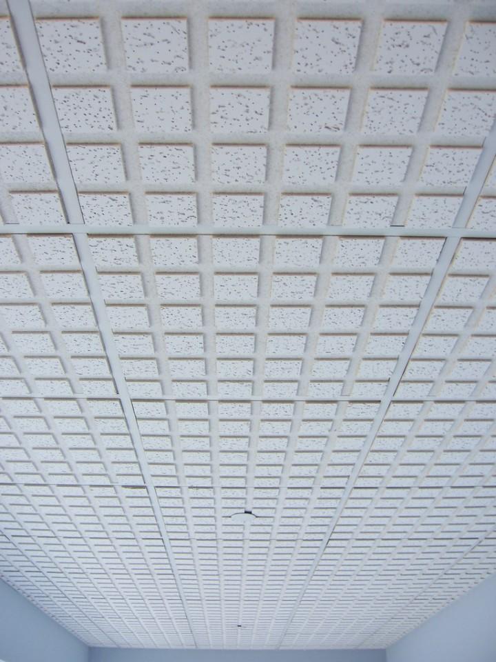 placas de cartón yeso para techos