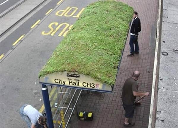 Una parada de autobus con techo verde